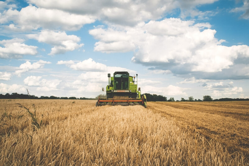 Benefícios contabilidade Rural